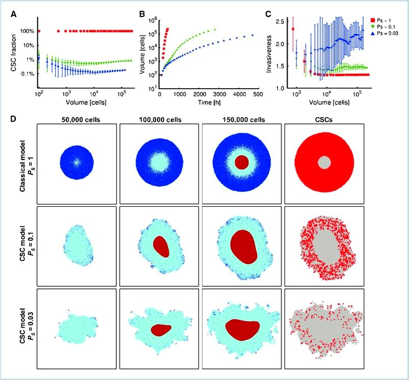 Emergent Behaviors from a Cellular Automaton Model for Invasive Tumor Growth in Heterogeneous Microenvironments Growing tumor with cell motility
