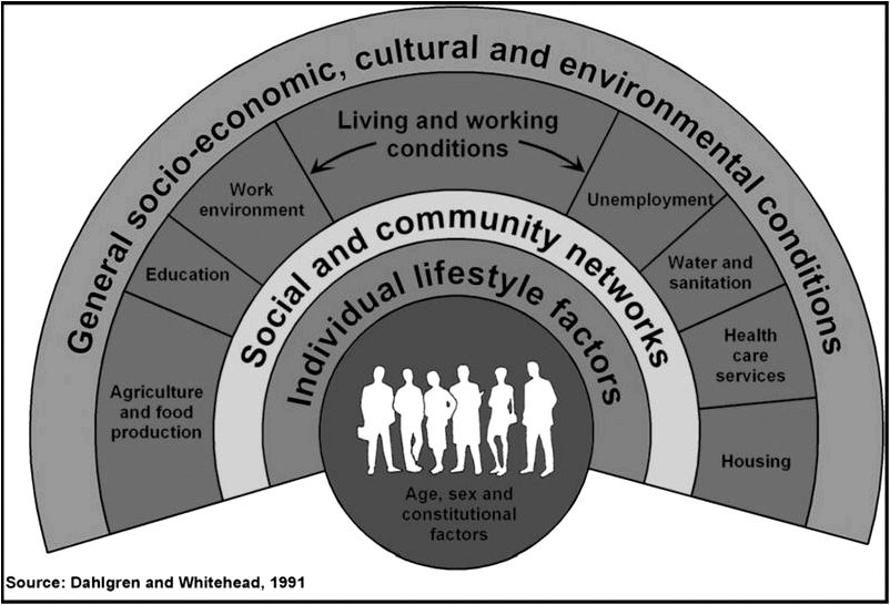 Systems change for that social determinants of health BMC Public Health Full Text