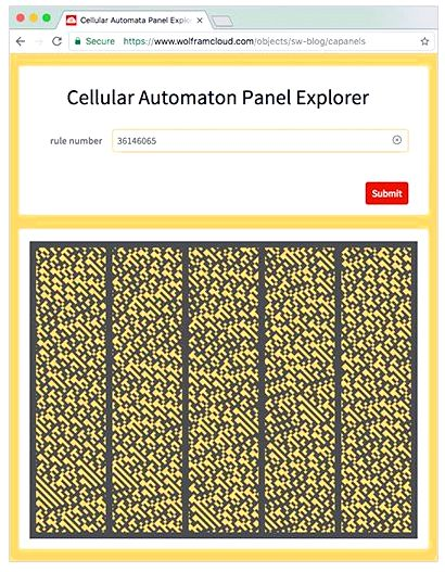 Cellular automaton panel explorer